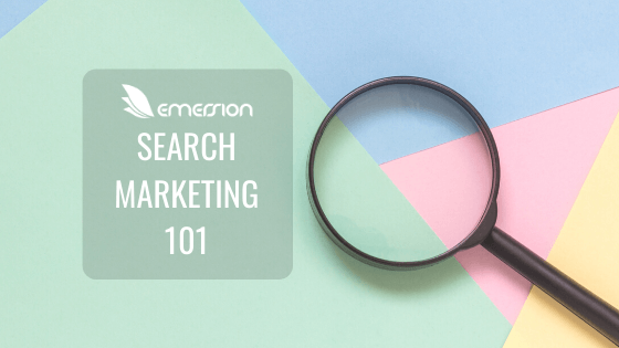 Search Marketing 1010